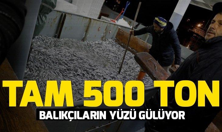 500 ton hamsi avlandı!