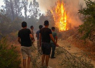 Uzmanlardan dört neden! Orman yangınları aynı anda nasıl başladı?