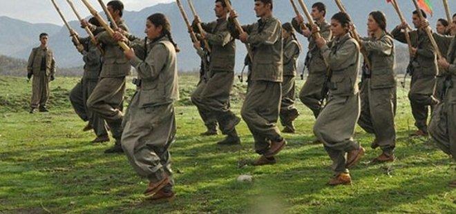AVRUPA'DAN PKK İTİRAFI!