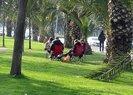 Son dakika: Tarım ve Orman Bakanlığından koronavirüs önlemi! Mangal ve piknik yasaklandı