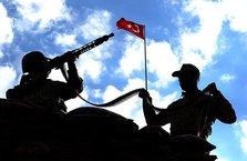 Afrin'de bir köy daha ele geçirildi