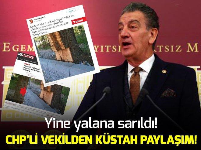 CHP'li Bozkurt skandallara doymuyor!