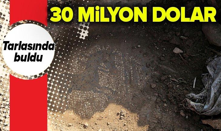 TARLASINDA BULDU! 30 MİLYON DOLARA SATMAK İSTERKEN YAKALANDI