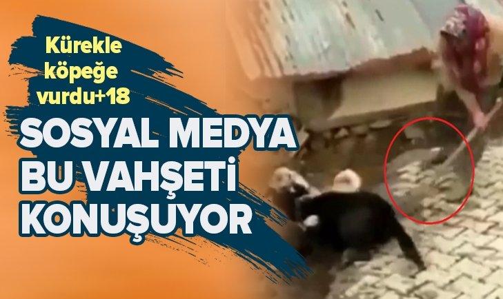SOSYAL MEDYA BU VAHŞETİ KONUŞUYOR +18