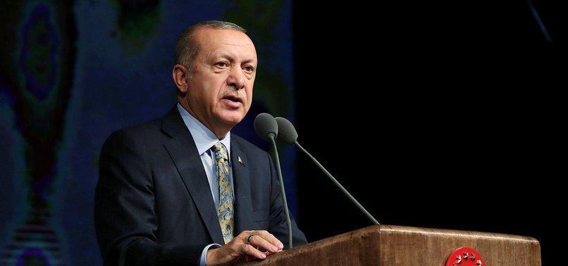 Başkan Erdoğan'dan Hayvan Hakları Yasası talimatı - A ...