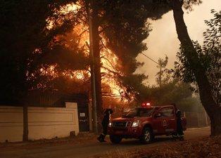 Dünyanın ciğerleri yanıyor: 40'tan fazla ülkede ormanlar alev alev!