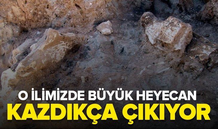 KAYSERİ'DE 8 MİLYON YILLIK YENİ FOSİLLER BULUNDU