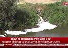 Son dakika: Aydında Büyük Menderes Nehrinde kirlilik! Su siyah akıyor CHPli belediye bakıyor |Video
