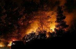 Bakan açıkladı! ''4 yangınla mücadele ediyoruz''