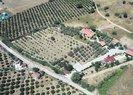 Fatih Portakal'ın kaçak çiftliği
