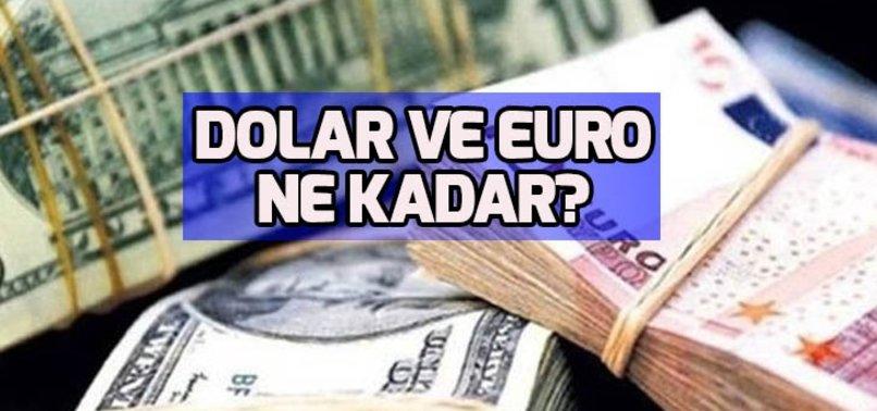 Dolar hızla düşüyor! Dolar ve Euro ne kadar? Dolar kuru 13 Şubat 2019
