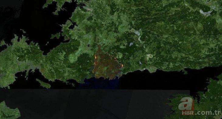 Yürek yakan görüntü! Orman yangınları uydudan böyle görüntülendi