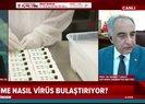 Koronavirüs salgını ne zaman bitecek? Uzman isim A Haber ekranlarında tarih verip açıkladı |Video