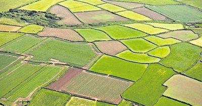 Tarıma dev destek! Kritik veriler açıklandı
