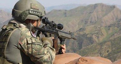 Son dakika | Terörle mücadelede PKK'ya bir operasyon daha!
