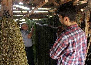 Amasya'da üretilen 'çeyrek altın' durduğu yerde para basıyor