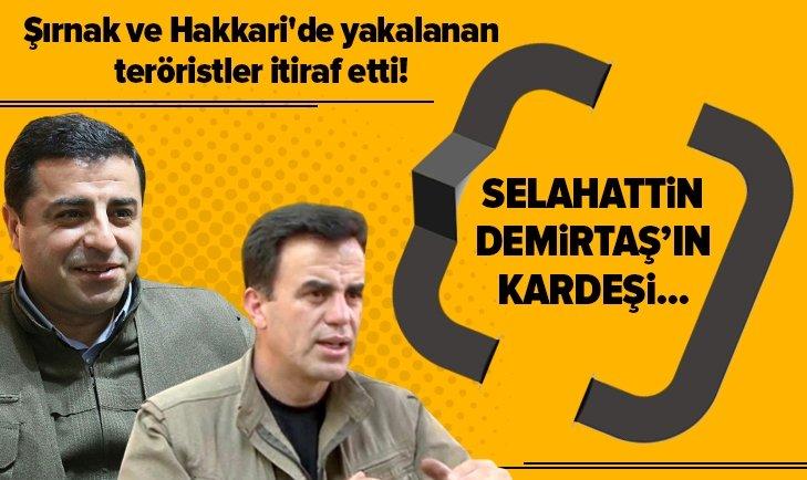 SELAHATTİN DEMİRTAŞ'IN KARDEŞİ HAKKINDA PKK GERÇEĞİ