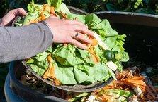 Meyve sebzenin bile yüzde 40'ını israf ediyoruz!