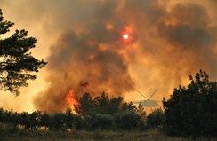 Bakan Koca'dan yangınlar hakkında flaş açıklama