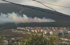 Pendik Kurtköy'de korkutan yangın