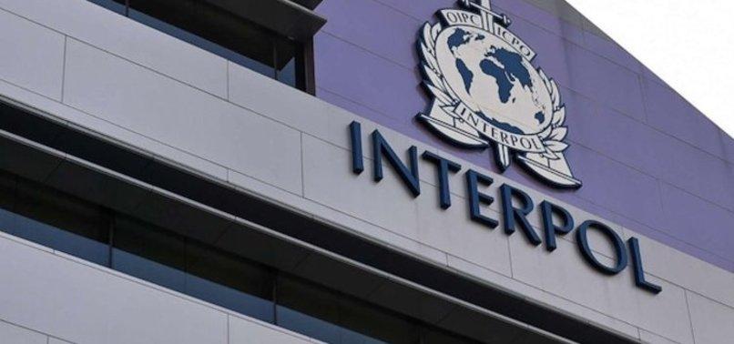 INTERPOL'ÜN ARADIĞI TÜRK YAKALANDI