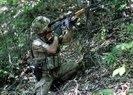 Doğu Karadeniz'de PKK'ya büyük operasyon