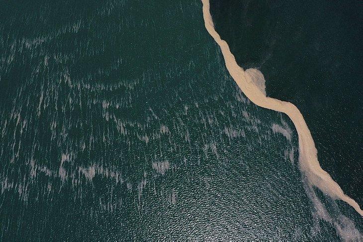 Deniz salyası balıklara zarar verir mi? Müsilaj balıkları zehirler mi? Balık yenir mi? Uzmanlar açıkladı!