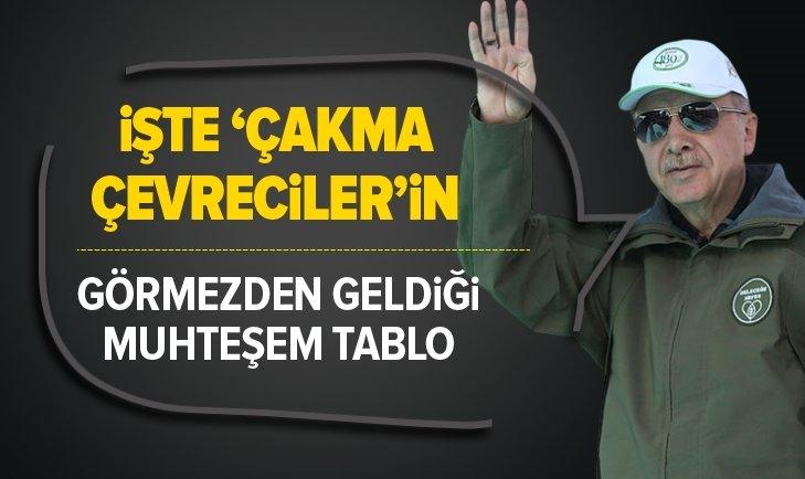 İŞTE TÜRKİYE'NİN 'YEŞİL' DÖNÜŞÜMÜ...