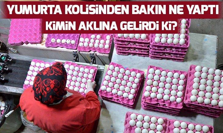 YUMURTA KOLİSİNDEN BAKIN NE YAPTI!