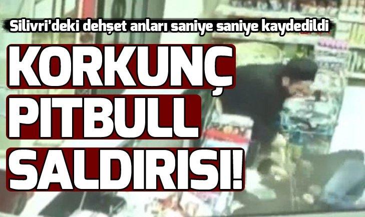 SİLİVRİ'DE PİTBULL DEHŞETİ KAMERADA!