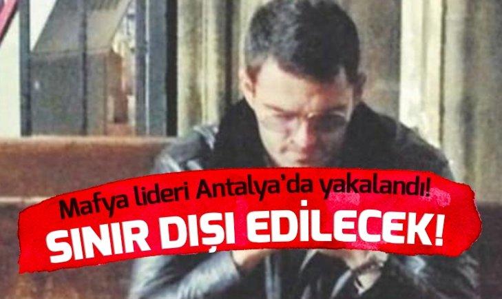 MAFYA LİDERİ ANTALYA'DA YAKALANDI