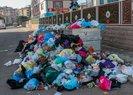 Maltepe sokaklarını çöp kokusu sardı! Vatandaşlar isyan etti