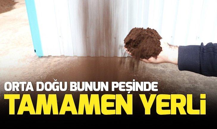 DENİZLİ'DE ÜRETİLDİ! ÇÖLDE DOMATES YETİŞTİRİLEBİLECEK
