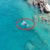 Nesli tükenmek üzere olan hayvan şans eseri drone ile görüntülendi