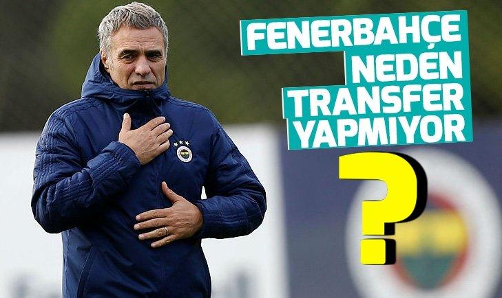 FENERBAHÇE'DE TEK TRANSFER SADIK!