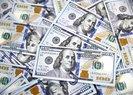 DOLAR VE EURO NE KADAR? (14 ŞUBAT 2018 DOLAR VE EURO FİYATLARI)