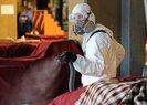 """ABD basını koronavirüse karşı verilen mücadeledeHz. Muhammed'i örnek gösterdi ve """"Temizlik"""" vurgusu yaptı"""