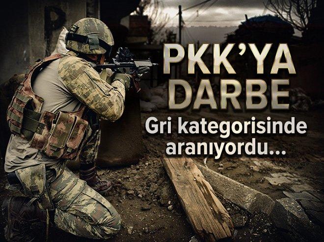 GRİ KATEGORİSİNDE ARANAN ŞAHIS YÜKSEKOVA'DA YAKALANDI