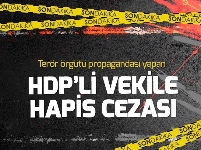 TERÖRİSTBAŞI ÖCALAN'IN YEĞENİ HDP MİLLETVEKİLİ DİLEK ÖCALAN'A HAPİS CEZASI