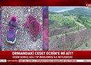 Ormanda bulunan ceset Ecrine mi ait? |Video