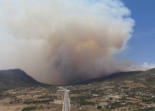 Karabulutlar dağılmıyor! Mersin Silifke'deki orman yangınında son durum ne?
