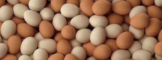 Fırsatçılar yumurtaya göz dikti