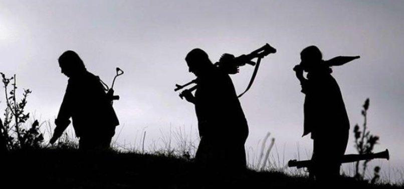 PKK VE HAŞDİ ŞABİ SÖZDE İLÇE MECLİSİ KURDU